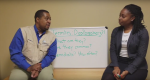 Whiteboard Wednesday: Termites – Deal Breakers? (with Corwin Jackson from Core Inspection Group)